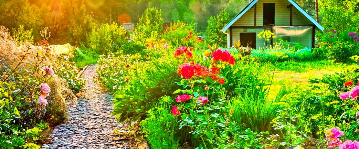 Conseils pratiques pour décorer son jardin